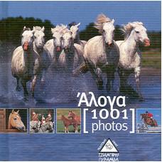 1001 PHOTOS:ΑΛΟΓΑ